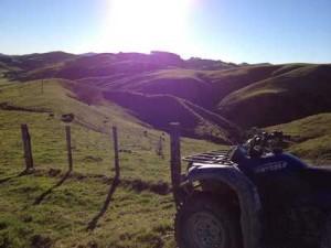 nice day farming day